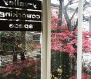 小田急南新宿駅徒歩1分の好立地で、四季折々の景色も感じられるオフィス空間